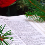 A Bible Study for Christmas Sunday
